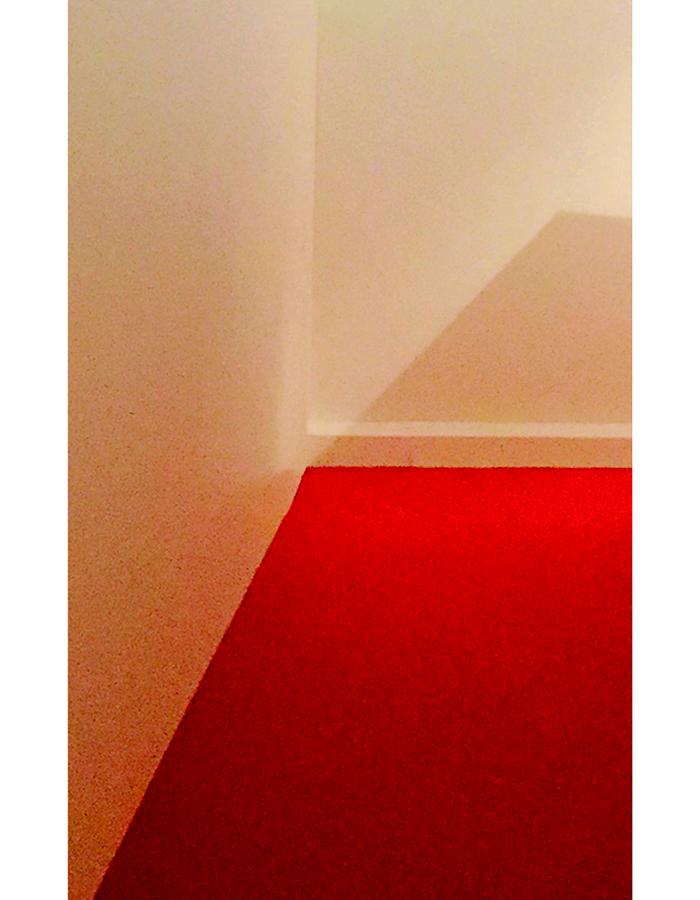 Rote Teppich 5