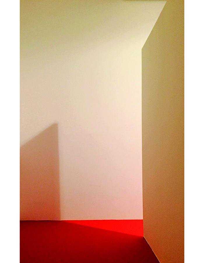 Rote Teppich 4